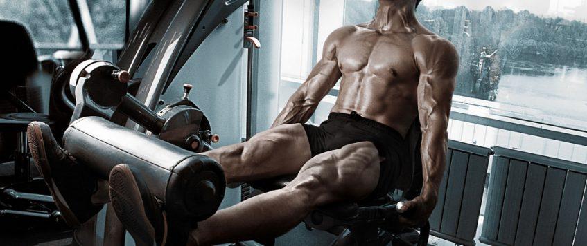 L'entraînement sur appareils de musculation : bon ou mauvais ?