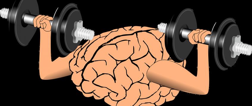 Le rôle de l'exercice sur la santé du cerveau dévoilé.