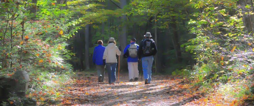 Une bonne technique de marche pour bonifier votre régime-retraite.